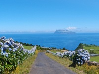 Fly-drive naar Terceira, Faial, Flores & São Miguel