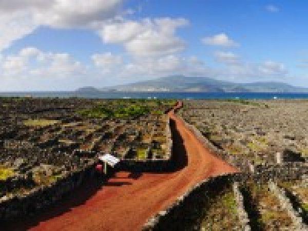 Fly-drive naar Terceira, Faial, Pico & São Miguel